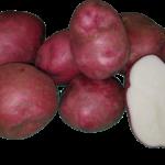 viking-potato